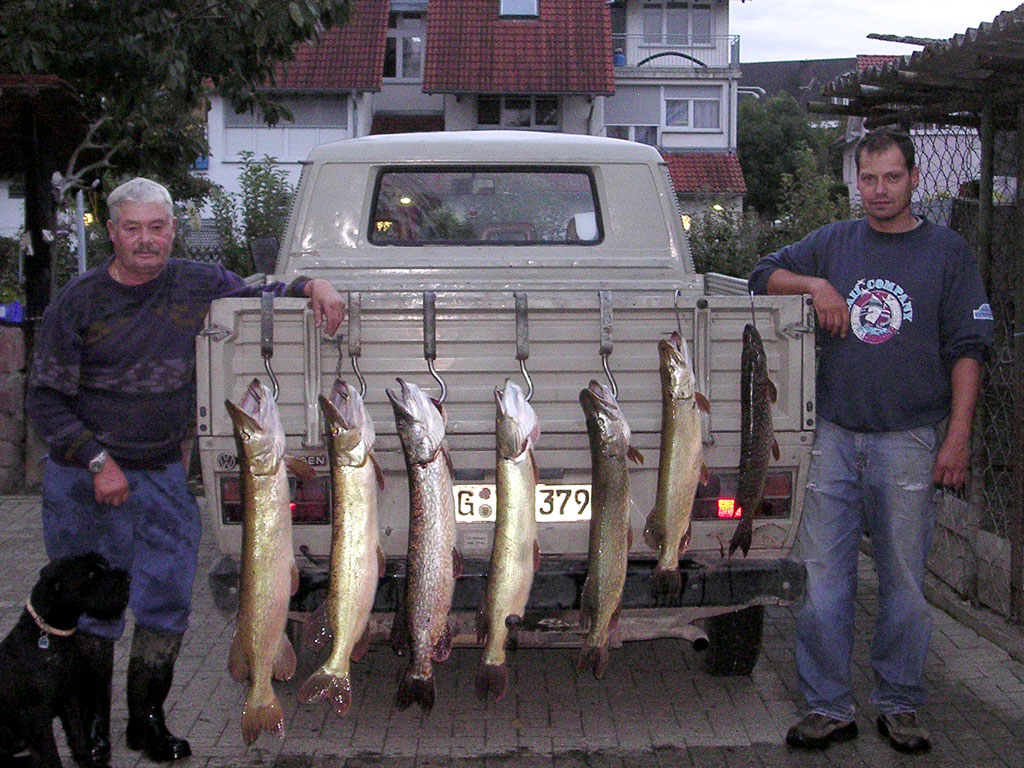 erfolgreicher Fischfang im Taubergiessen