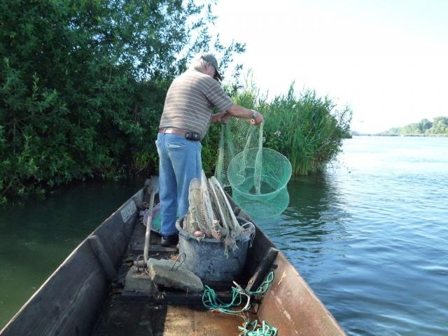 Stocherkahn fischnetz auslegen